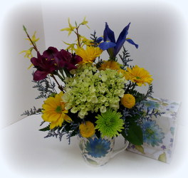 Aqua Expression from Lesher's Flowers, local St. Louis Florist since 1973