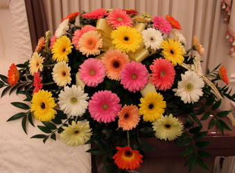 Gorgeous Gerbera Casket Spray from Lesher's Flowers, local St. Louis Florist since 1973
