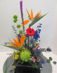 Tropical Breeze from Lesher's Flowers, local St. Louis Florist since 1973