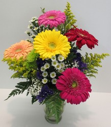 Splash of Color from Lesher's Flowers, local St. Louis Florist since 1973
