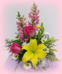 Spring Surprise from Lesher's Flowers, local St. Louis Florist since 1973