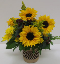 Sunny Sunflowers from Lesher's Flowers, local St. Louis Florist since 1973