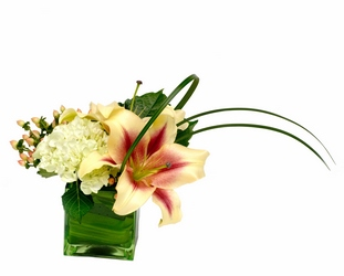 Asymmetric Beauty from Lesher's Flowers, local St. Louis Florist since 1973