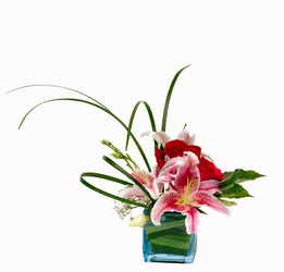 Stylish Lily from Lesher's Flowers, local St. Louis Florist since 1973