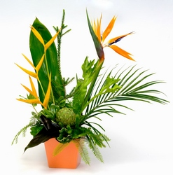Tropical Fantasy from Lesher's Flowers, local St. Louis Florist since 1973
