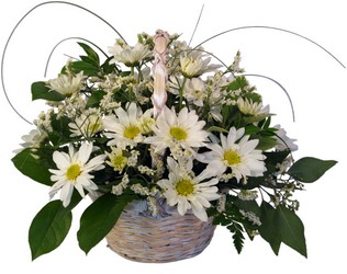 Daisy Cheer from Lesher's Flowers, local St. Louis Florist since 1973