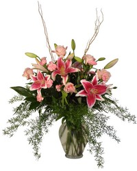 Gazers and Pink from Lesher's Flowers, local St. Louis Florist since 1973